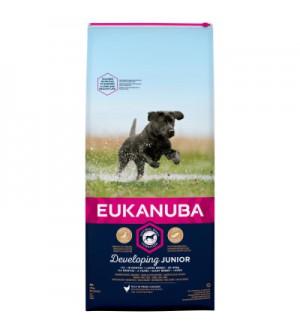 Eukanuba Puppy &amp Junior Large Breed