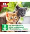 Hill's Science Plan Kitten Healthy Development Chicken sausas maistas katėms
