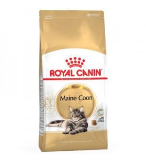 Royal Canin Maine Coon sausas maistas katėms