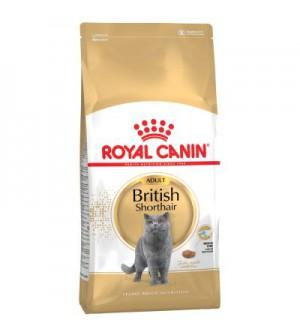 Royal Canin British Shorthair sausas maistas katėms