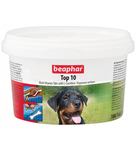 Beaphart TOP10 šunims