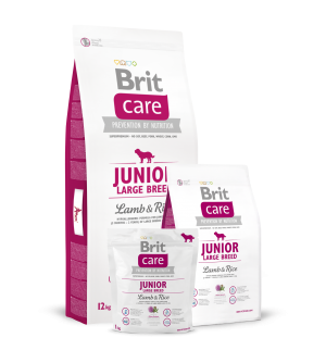 Brit Care Junior Large Breed Lamb & Rice sausas maistas šunims