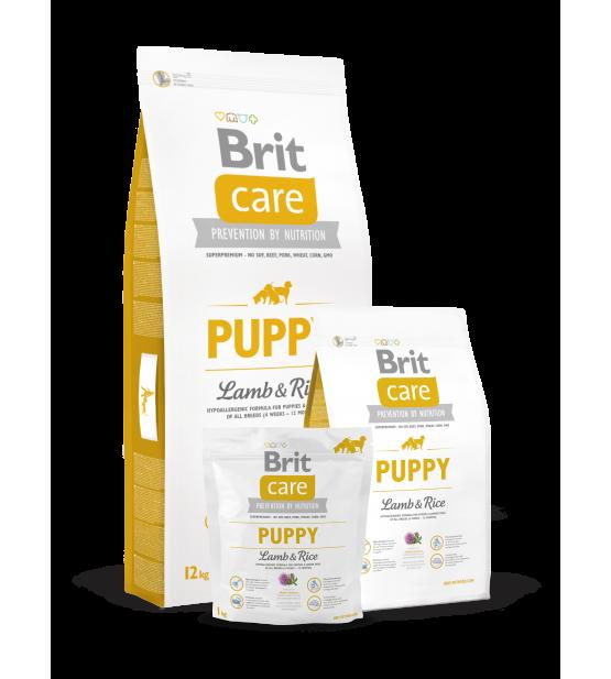 Brit Care Puppy All Breed Lamb & Rice sausas maistas šunims