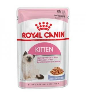 Royal Canin Kitten Instinctive in Jelly 85g