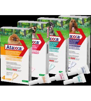 Ataxxa lašai šunims nuo erkių, blusų ir uodų (1 vnt.)