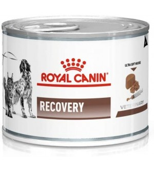 Royal Canin VD Dog/Cat Recovery 195g