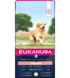 Eukanuba Senior L / XL Lamb and Rice