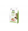 Brit Care Cat GF Senior Weight Control sausas maistas katėms