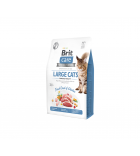 Brit Care Cat GF Large Cats Power & Vitality sausas maistas katėms
