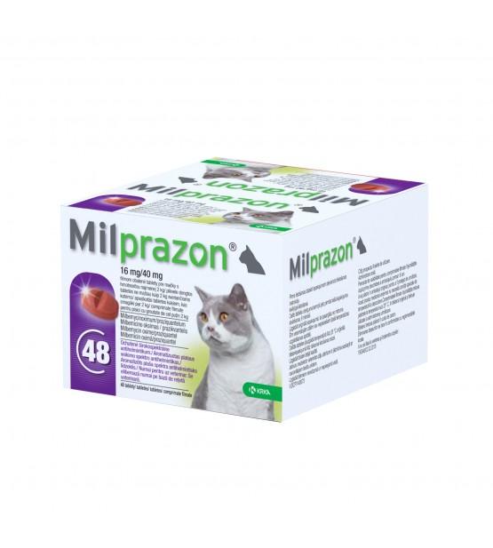 Milprazon katėms 16mg/40mg, N1