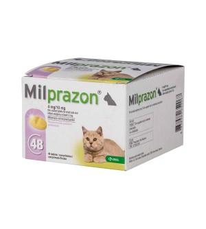 Milprazon 4mg/10mg kačiukams, N1