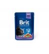 BRIT PREMIUM Cat Pouch Cod Fish konservai katėms 100g